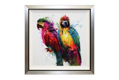 Parrots Pop Liquid Art Picture